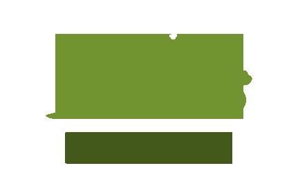 Qadir Nagar Library